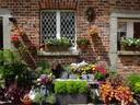 Wells House - Flower Shop